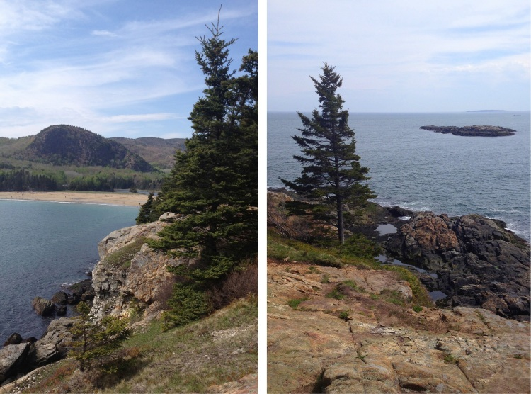 View of Old Soaker and the Beehive from the Great Head trail, Acadia.