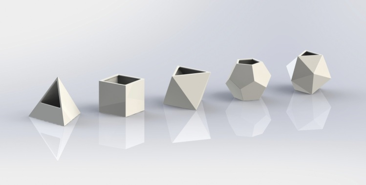 3-D rendering of plant pots shaped like the five Platonic solids.